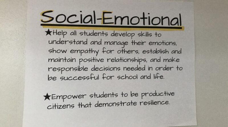 Social Emotional Goal 2