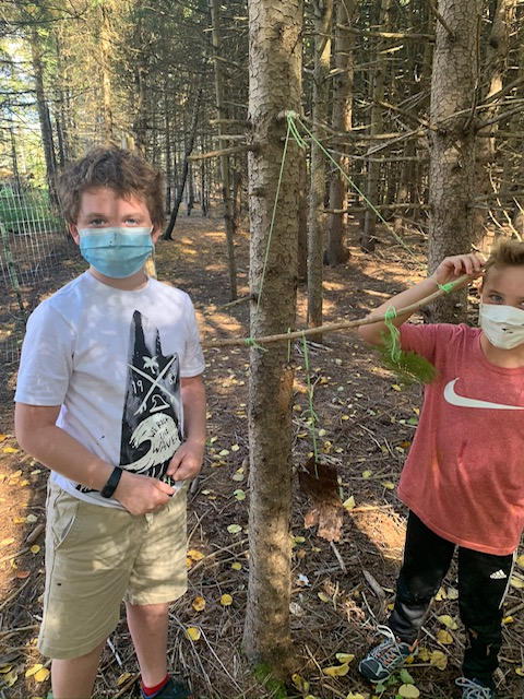 Margaret Dunne forest newsletter