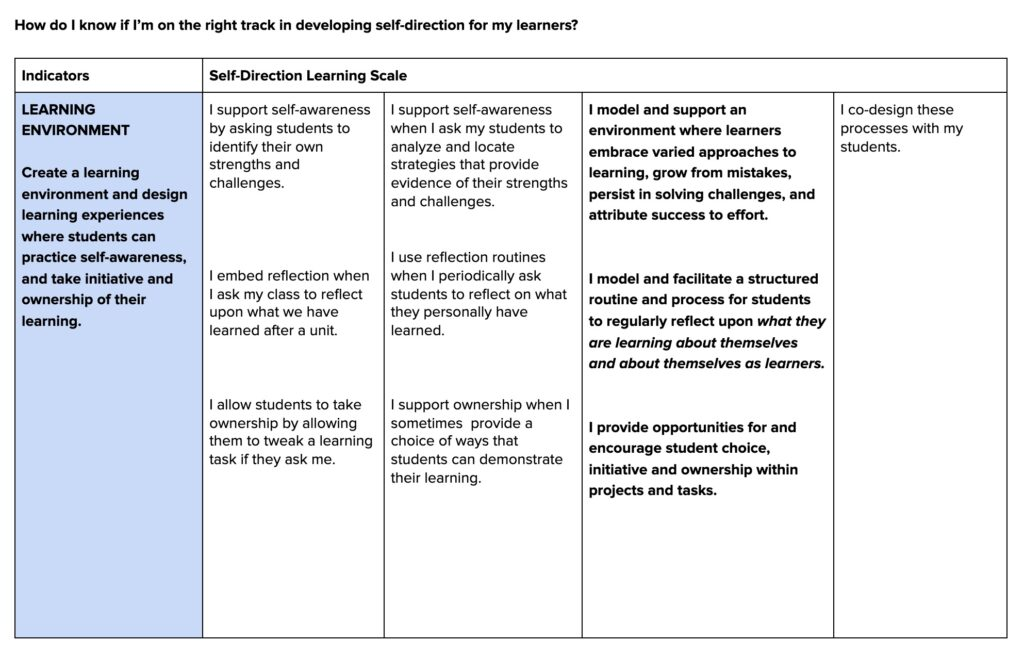 self-direction learning scale