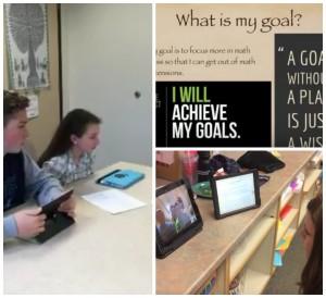 goal-setting for PLPs